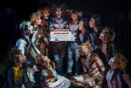 Jubilerende 'Cats on Tour' doet nieuwe Antwerpse concertzaal aan